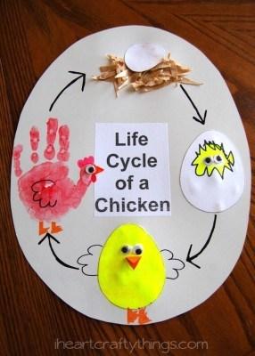 Manualidades sencillas y divertidas para explicar ciclos vitales en animales y plantas